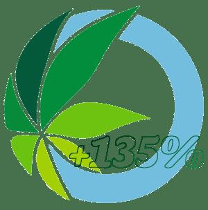 Presentation of the Cannabis Ayurveda Yukha Pack