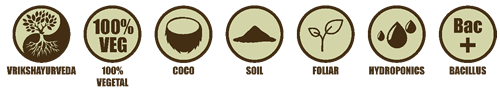 Algae Gold