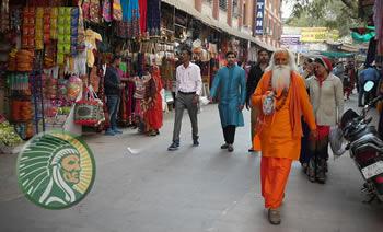Hindu Brahmin
