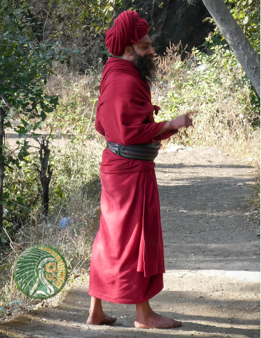 Indiase meekrap gebruikt voor het verven van stoffen - Rubia cordifolia L