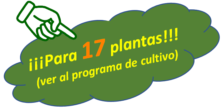 Cannabis Ayurveda Pack para 17 plantas