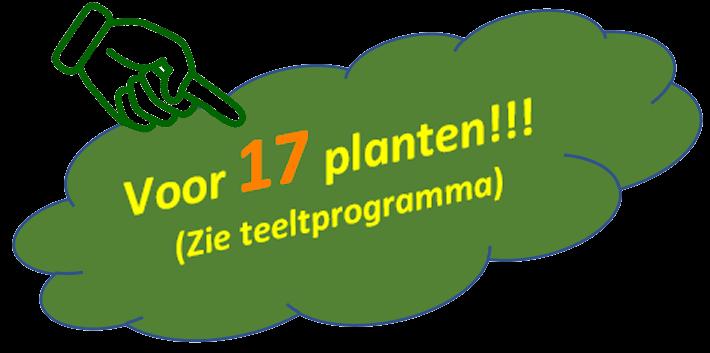 Cannabis Ayurveda Pack voor 17 planten