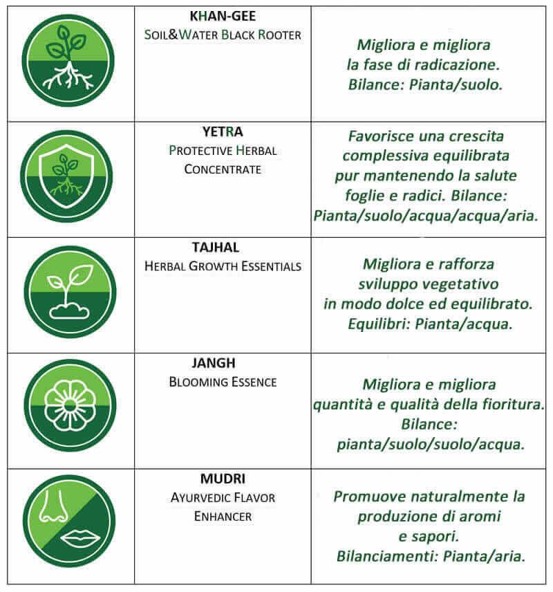 Dettaglio della confezione per il programma di coltivazione idroponica della cannabis