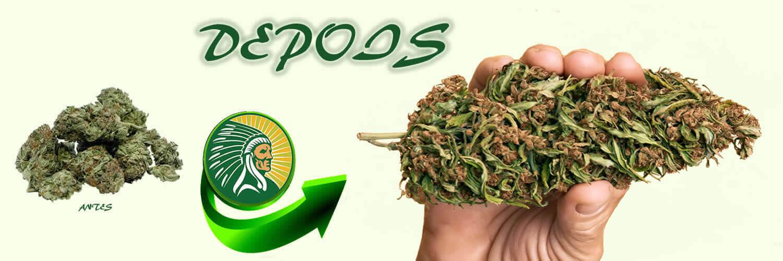 Fertilizante de produção de cannabis +135%