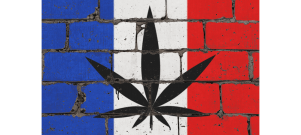 Vive La France? - Is France Finally Going To Legalize Le Cannabis In 2021?
