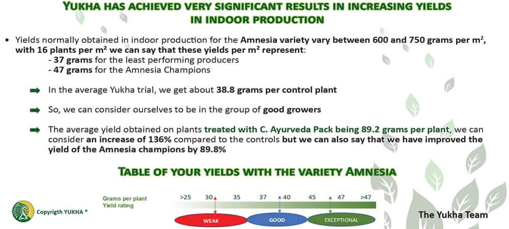Summary of agronomic trials with Amnesia variety