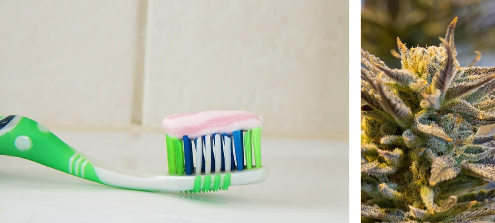 Are Cannabinoids The Future Of Toothpaste?
